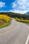 Road at top of the mountain. — Stock Photo