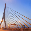 Rama VIII Bridge — Stock Photo