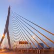 Rama VIII Bridge — Stock Photo