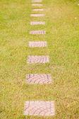 Garden walkways — Stock Photo