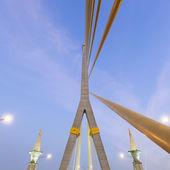 Rama VIII Bridge in the evening — Stock Photo