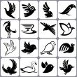 Stock Vector: Bird icons set