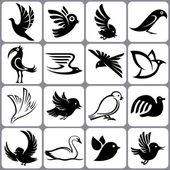 Bird icons set — Stock Vector