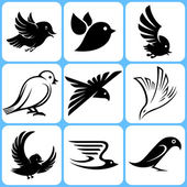 набор иконок птицы — Cтоковый вектор