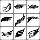Wings set — Stock Vector