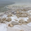 Mineral sediments made of salt, rocks and water at lowest point on earth, Dead Sea — Stock Photo #20382055