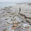 Mineral sediments made of salt, rocks and water at lowest point on earth, Dead Sea — Stock Photo #20382177