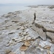 Mineral sediments made of salt, rocks and water at the lowest point on earth, Dead Sea — Stock Photo