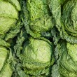 Green cabbage — Stock Photo #31173939