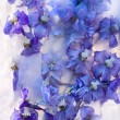 Frozen blue delphinium flower — Stock fotografie