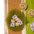 Stock Photo: Easter eggs in nest and blue hyacinth