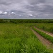 Road in field and stormy clouds — Stock Photo #30012059