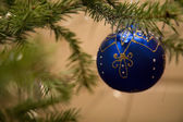 Christmas blue ball with twig of fir — Stock Photo