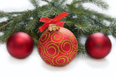 Christmas red ball with twig of fir — Stock Photo