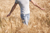 Man in a field — Stock Photo