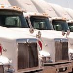 Semi Truck Fleet — Stock Photo #3865383
