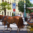 Horse carriage on street in Karlovy Vary — Stock Photo #18245761