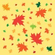 Autumn background from leaves — Vector de stock