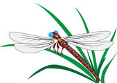 Dragonfly — Vector de stock