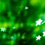 zielony sosnowe — Zdjęcie stockowe