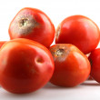Fresh tomatoes — Stock Photo #13565499
