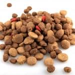 Dry dog food — Stock Photo #13764180