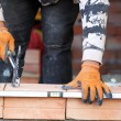 Bricklayer — Stock Photo #16909331