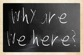"""why are we here"" handwritten with white chalk on a blackboard — Stock Photo"