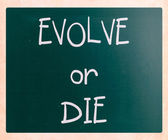 """Evolve or Die"" handwritten with white chalk on a blackboard — ストック写真"