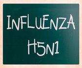 Imágenes de los virus h5n1 de la gripe — Foto de Stock