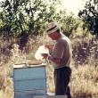 beekeeper — Stock Photo #38474465