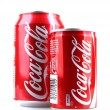 Постер, плакат: AYTOS BULGARIA JANUARY 23 2014: Coca Cola bottle can isolate