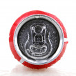 Постер, плакат: AYTOS BULGARIA JANUARY 25 2014: Coca Cola bottle can isolate