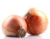 Bulbos de la cebolla fresca aislados sobre fondo blanco — Foto de Stock
