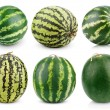 Set of watermelon fruits — Stock Photo