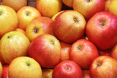 Closeup of many red-yellow apple fruits — Stock Photo