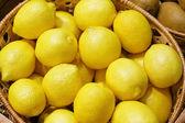Closeup of many yellow lemon fruits — Stock Photo