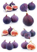 Set of many fig fruits on white — Stock Photo