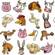 Cartoon farm animals heads huge set — Stock Vector #12455466