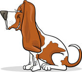Basset hound dog cartoon illustration — Stock Vector