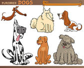 Dog breeds cartoon set — Stock Vector