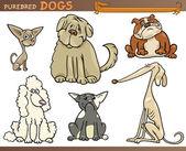 Purebred dogs cartoon set — Stock Vector