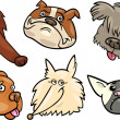Cartoon funny dogs heads set - Stock Vector