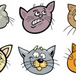 Cartoon funny cats heads set — Stock Vector #16100361