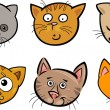 Cartoon funny cats heads set — Stock Vector