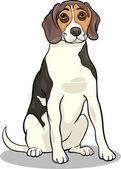 Beagle dog cartoon illustration — Stock Vector