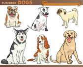 Purebred dogs cartoon illustration set — 图库矢量图片