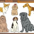 Purebred dogs cartoon illustration set — Imagen vectorial