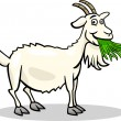 Vector de stock : Goat farm animal cartoon illustration