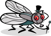 Housefly insect cartoon illustration — Stock Vector